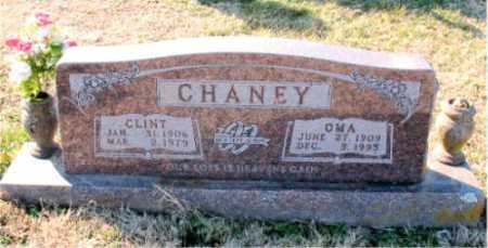 CHANEY, CLINT - Carroll County, Arkansas | CLINT CHANEY - Arkansas Gravestone Photos