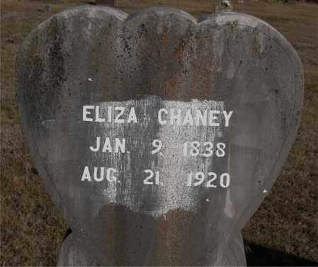 CHANEY, ELIZA - Carroll County, Arkansas | ELIZA CHANEY - Arkansas Gravestone Photos