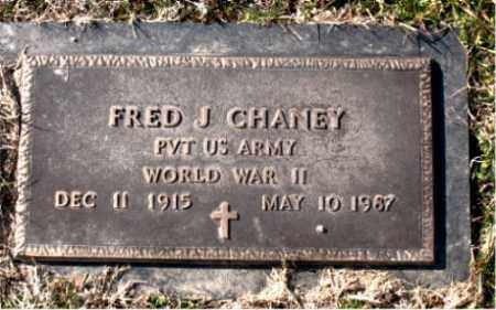 CHANEY (VETERAN WWII), FRED J. - Carroll County, Arkansas | FRED J. CHANEY (VETERAN WWII) - Arkansas Gravestone Photos