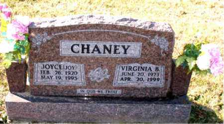 CHANEY, VIRGINIA B. - Carroll County, Arkansas | VIRGINIA B. CHANEY - Arkansas Gravestone Photos