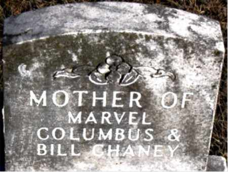 CHANEY, MOTHER - Carroll County, Arkansas | MOTHER CHANEY - Arkansas Gravestone Photos