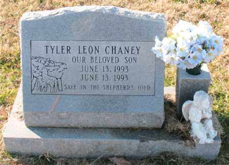 CHANEY, TYLER  LEON - Carroll County, Arkansas | TYLER  LEON CHANEY - Arkansas Gravestone Photos