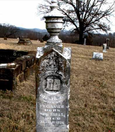 COLLIER, DILLIA ANN - Carroll County, Arkansas | DILLIA ANN COLLIER - Arkansas Gravestone Photos
