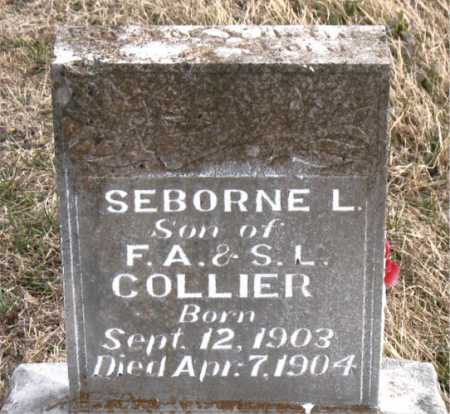 COLLIER, SEBORNE L - Carroll County, Arkansas | SEBORNE L COLLIER - Arkansas Gravestone Photos