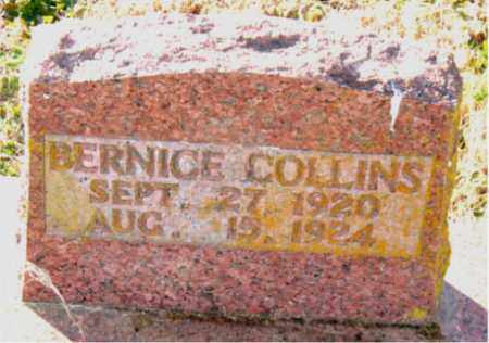 COLLINS, BERNICE - Carroll County, Arkansas | BERNICE COLLINS - Arkansas Gravestone Photos