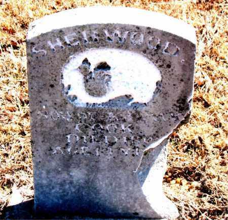 COOK, SHERWOOD - Carroll County, Arkansas | SHERWOOD COOK - Arkansas Gravestone Photos
