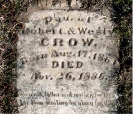 CROW, DAUGHTER - Carroll County, Arkansas | DAUGHTER CROW - Arkansas Gravestone Photos