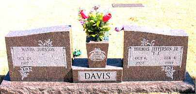 DAVIS, JR., THOMAS JEFFERSON - Carroll County, Arkansas | THOMAS JEFFERSON DAVIS, JR. - Arkansas Gravestone Photos
