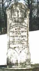 DAVIS, CATHERINE - Carroll County, Arkansas | CATHERINE DAVIS - Arkansas Gravestone Photos
