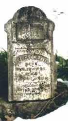 DAVIS, JEFFERSON - Carroll County, Arkansas | JEFFERSON DAVIS - Arkansas Gravestone Photos