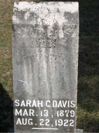 DAVIS, SARAH C. - Carroll County, Arkansas | SARAH C. DAVIS - Arkansas Gravestone Photos