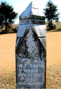 DAVIS, W  F - Carroll County, Arkansas | W  F DAVIS - Arkansas Gravestone Photos
