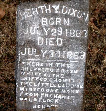 DIXON, BERTHY - Carroll County, Arkansas | BERTHY DIXON - Arkansas Gravestone Photos