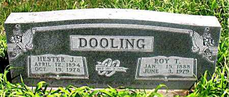 DOOLING, HESTER J. - Carroll County, Arkansas | HESTER J. DOOLING - Arkansas Gravestone Photos