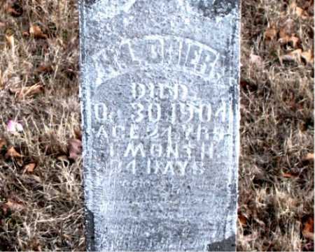 DRIER, H.L. - Carroll County, Arkansas | H.L. DRIER - Arkansas Gravestone Photos