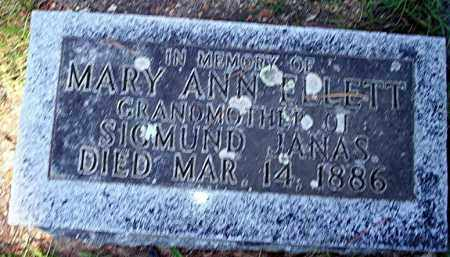 ELLETT, MARY ANN - Carroll County, Arkansas | MARY ANN ELLETT - Arkansas Gravestone Photos