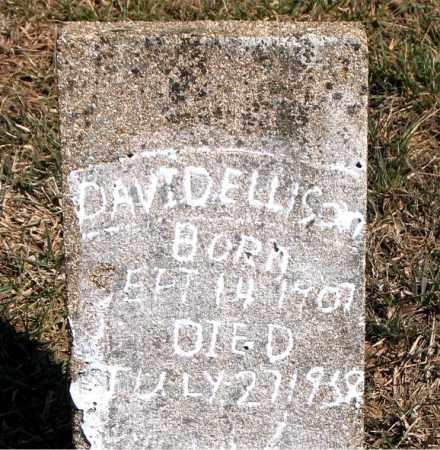 ELLISON, DAVID - Carroll County, Arkansas | DAVID ELLISON - Arkansas Gravestone Photos