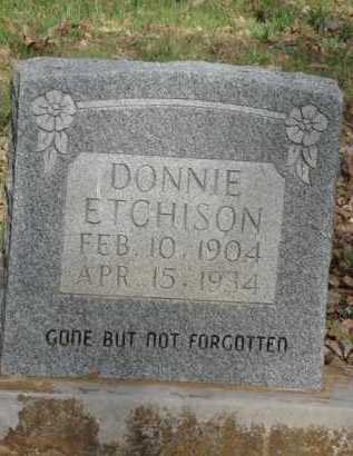 ETCHISON, DONNIE - Carroll County, Arkansas | DONNIE ETCHISON - Arkansas Gravestone Photos