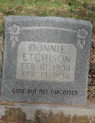 ETCHISON, DONNIE - Carroll County, Arkansas   DONNIE ETCHISON - Arkansas Gravestone Photos