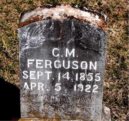FERGUSON, C.  M. - Carroll County, Arkansas | C.  M. FERGUSON - Arkansas Gravestone Photos