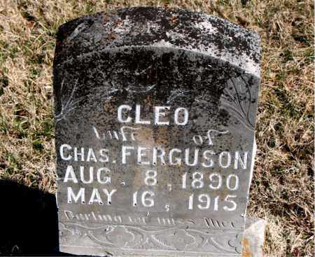 FERGUSON, CLEO - Carroll County, Arkansas | CLEO FERGUSON - Arkansas Gravestone Photos