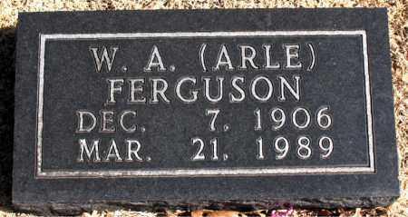 FERGUSON, W. A. (ARLE) - Carroll County, Arkansas | W. A. (ARLE) FERGUSON - Arkansas Gravestone Photos