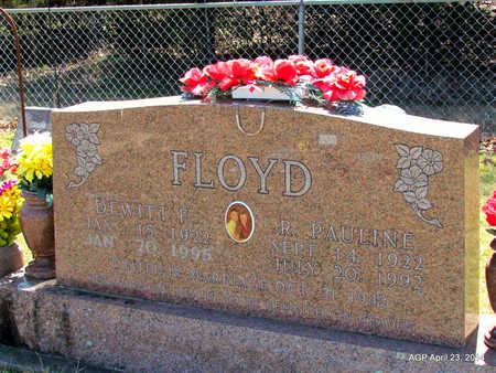 FLOYD, DEWITT F. - Carroll County, Arkansas | DEWITT F. FLOYD - Arkansas Gravestone Photos