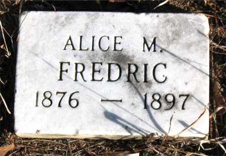 FREDRIC, ALICE M. - Carroll County, Arkansas | ALICE M. FREDRIC - Arkansas Gravestone Photos