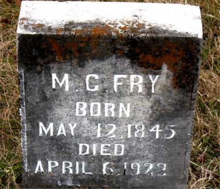 FRY, M.C. - Carroll County, Arkansas | M.C. FRY - Arkansas Gravestone Photos