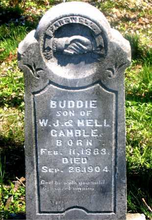 GAMBLE, BUDDIE - Carroll County, Arkansas | BUDDIE GAMBLE - Arkansas Gravestone Photos