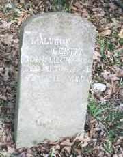 WHITE GENTRY, MALVINA F - Carroll County, Arkansas | MALVINA F WHITE GENTRY - Arkansas Gravestone Photos