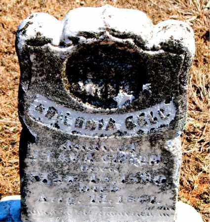 GIBSON, ARIZONA BELL - Carroll County, Arkansas | ARIZONA BELL GIBSON - Arkansas Gravestone Photos