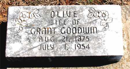 GOODMAN, OLIVE - Carroll County, Arkansas | OLIVE GOODMAN - Arkansas Gravestone Photos