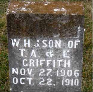 GRIFFITH, W. H. J. - Carroll County, Arkansas | W. H. J. GRIFFITH - Arkansas Gravestone Photos