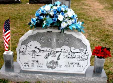 GRIGG, JUNIOR - Carroll County, Arkansas | JUNIOR GRIGG - Arkansas Gravestone Photos