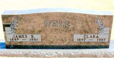 HALE, CLARA - Carroll County, Arkansas | CLARA HALE - Arkansas Gravestone Photos