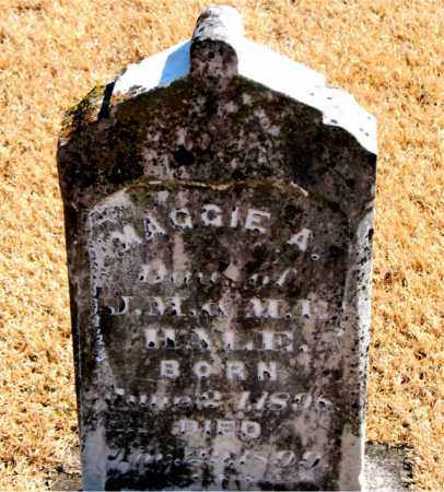 HALE, MAGGIE - Carroll County, Arkansas | MAGGIE HALE - Arkansas Gravestone Photos