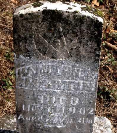 HAMILTON, MARTIN - Carroll County, Arkansas | MARTIN HAMILTON - Arkansas Gravestone Photos