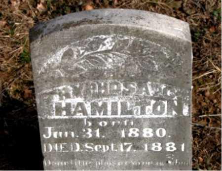 HAMILTON, TRYPHOSA C. - Carroll County, Arkansas | TRYPHOSA C. HAMILTON - Arkansas Gravestone Photos