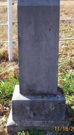 HANBY, ROSA - Carroll County, Arkansas | ROSA HANBY - Arkansas Gravestone Photos