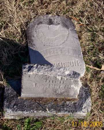 HENDERSON, EVERT F. - Carroll County, Arkansas | EVERT F. HENDERSON - Arkansas Gravestone Photos