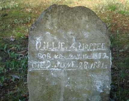 HOPPER, DILLIE - Carroll County, Arkansas | DILLIE HOPPER - Arkansas Gravestone Photos