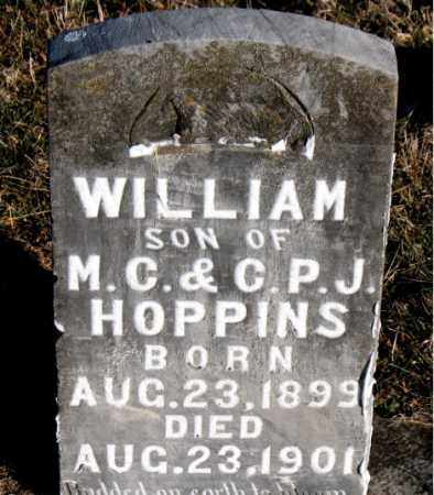 HOPPINS, WILLIAM - Carroll County, Arkansas | WILLIAM HOPPINS - Arkansas Gravestone Photos