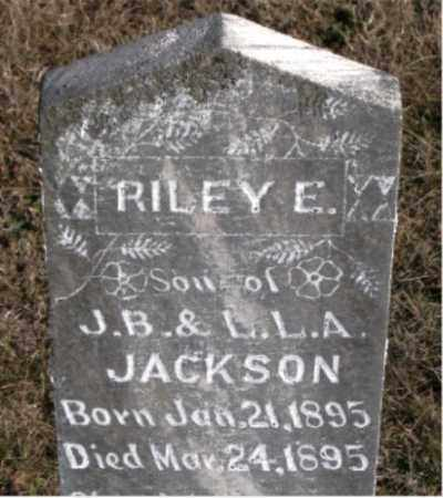 JACKSON, RILEY  E. - Carroll County, Arkansas | RILEY  E. JACKSON - Arkansas Gravestone Photos