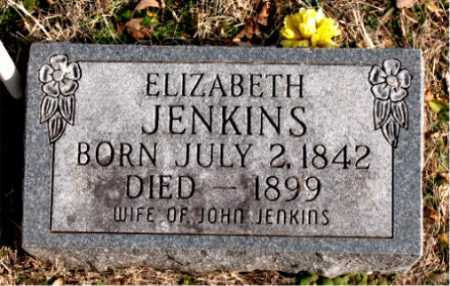 JENKINS, ELIZABETH - Carroll County, Arkansas | ELIZABETH JENKINS - Arkansas Gravestone Photos
