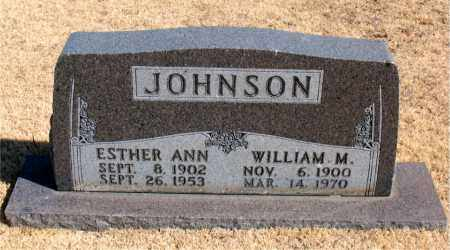 JOHNSON, WILLIAM M. - Carroll County, Arkansas | WILLIAM M. JOHNSON - Arkansas Gravestone Photos