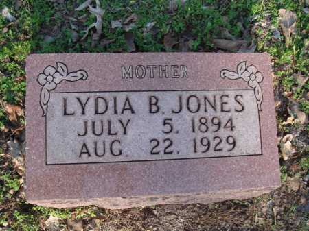 JONES, LYDIA B. - Carroll County, Arkansas | LYDIA B. JONES - Arkansas Gravestone Photos