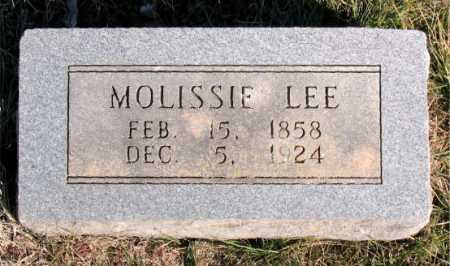 LEE, MOLISSIE - Carroll County, Arkansas | MOLISSIE LEE - Arkansas Gravestone Photos