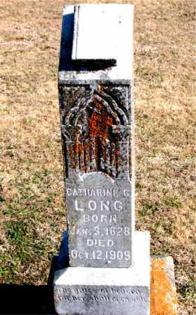 LONG, CATHARINE G - Carroll County, Arkansas | CATHARINE G LONG - Arkansas Gravestone Photos