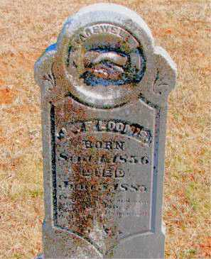 LOOMIS, J. F. - Carroll County, Arkansas | J. F. LOOMIS - Arkansas Gravestone Photos